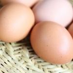 卵は全サイズ黄身の大きさは同じ?サイズで異なる点は?